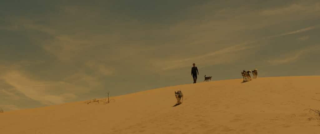 Willem Dafoe wandert in Siberia als Clint durch die Wüste über eine Düne.