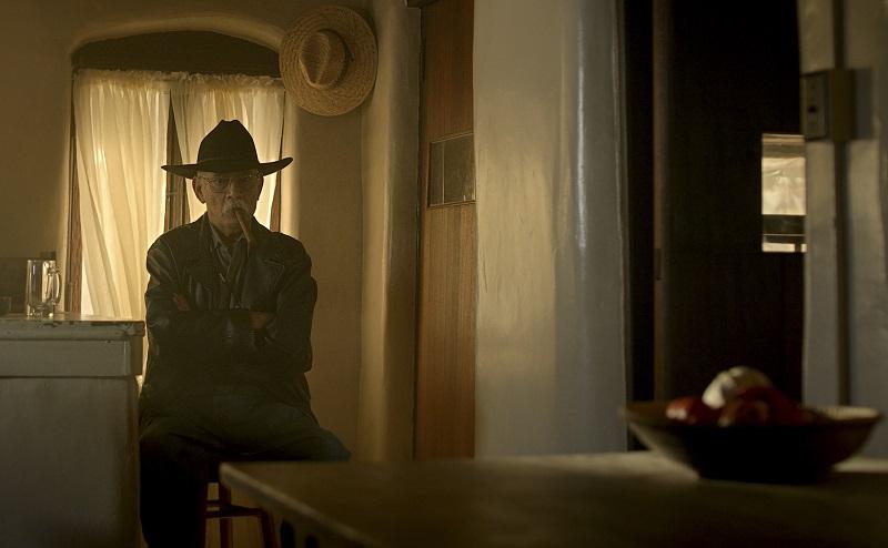 Der Sheriff mit dem Cowboyhut hockt still in der Ecke einer Küche - Neu bei Prime im August 2020