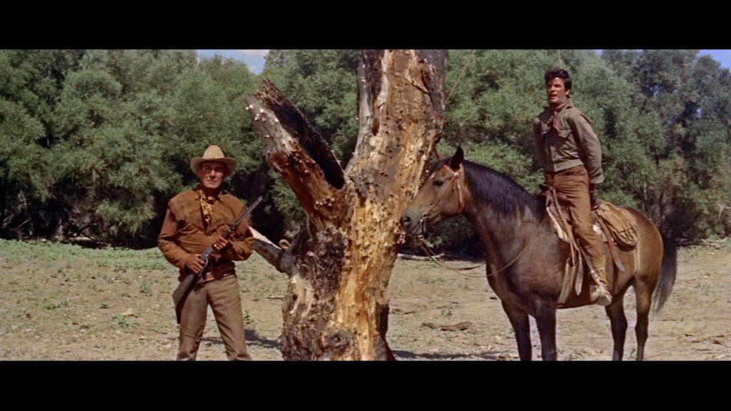 Ben Brigade (Randolph Scott, links) und Billy John (James Best, rechts) am Galgenbaum ©Koch Films