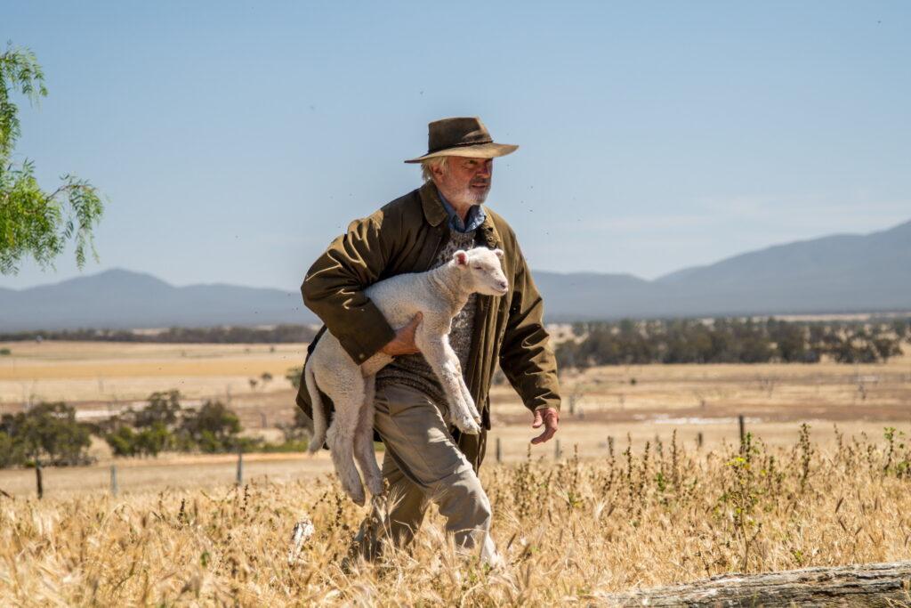 Colin, gespielt von Sam Neill, trägt ein gefundenes Lamm über die Weide zu seinem Bruder.