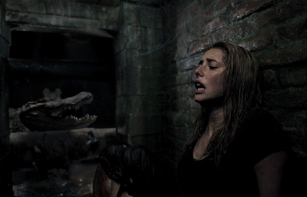 Im nassen Keller wird die angsterfüllte Haley von dem riesigen Alligator an die Wand gedrängt - Neu bei Prime im Juni 2020