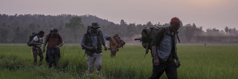 Die Veteranen aus Da 5 Bloods laufen bei ihrer Suche durch ein Reisfeld