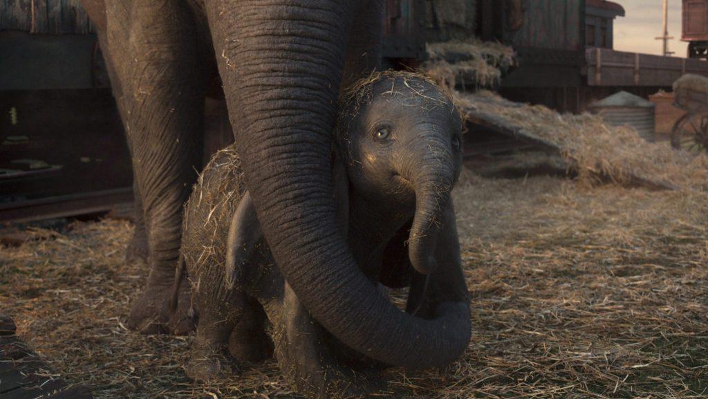 Dumbo ist nicht allein © The Walt Disney Company Germany