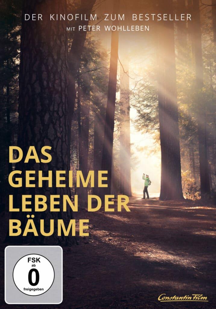 Das DVD-Cover von Das geheime Leben der Bäume zeigt einen lichtdurchfluteten Wald. Peter Wohlleben steht mit einem Fotoapparat als kleiner Mensch zwischen den mächtigen Bäumen.