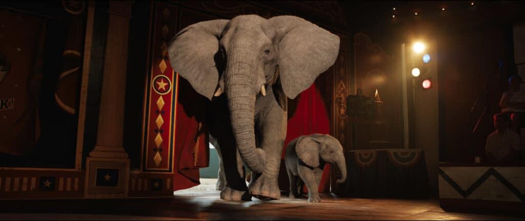 """Die Elefantendame Stella und das Baby Ruby betreten die Manege in """"Der einzig wahre Ivan"""". Diese betreten sie durch einen roten Vorhang, der rechts von der Manege liegt. Noch etwas weiter rechts von diesem Eingang sieht man leicht den Anfang einer Tribüne auf der ein paar Leute sitzen."""