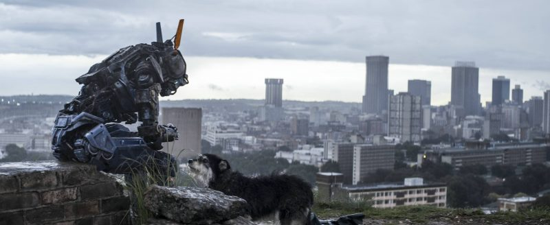 Die Titelfigur von CHAPPIE (2015) © 2015 Columbia Pictures Industries, Inc., LSC Film Corporation and MRC II Distribution Company LP. All Rights Reserved