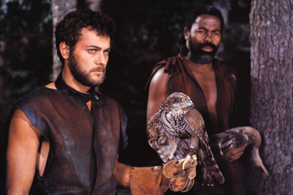 Eric (Tony Curtis) sorgt mit seinem kratzbürstigen Falken... | DIE WIKINGER © capelight pictures