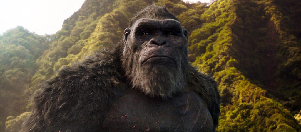 Kong schaut auf der Insel Skull Island traurig in die Weite des Dschungels