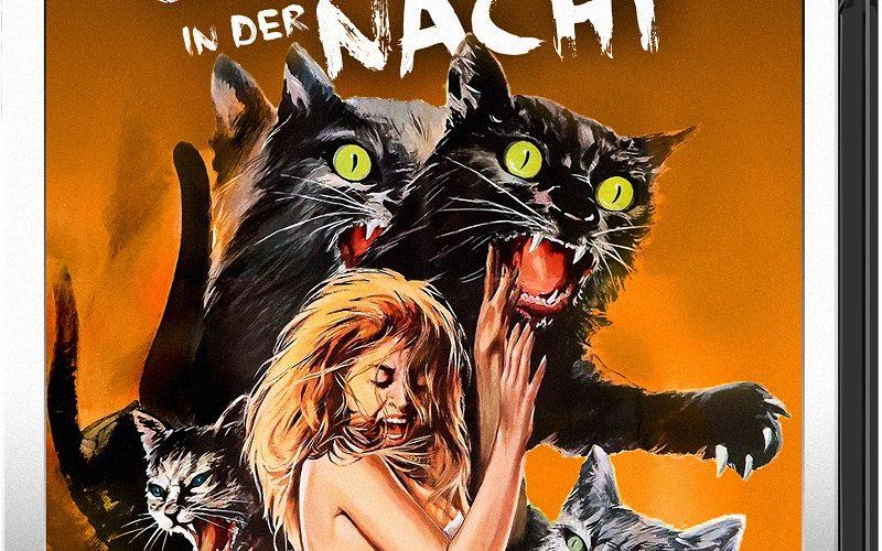 Eine erschrockene Frau im Nachthemd ist von einigen Katzen umgeben, die sie mit ausgefahrenen Krallen angreifen auf dem Cover von Grüne Augen in der Nacht