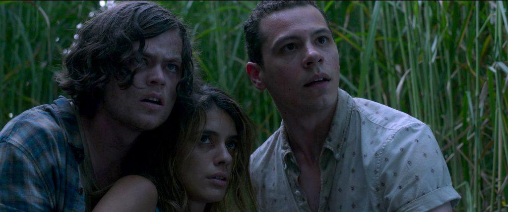 Harrison Gilbertson, Laysla De Oliveira und Avery Whitted mitten Im hohen Gras.