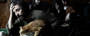 Llewyn mit der Katze der Gorfeins ©StudioCanal