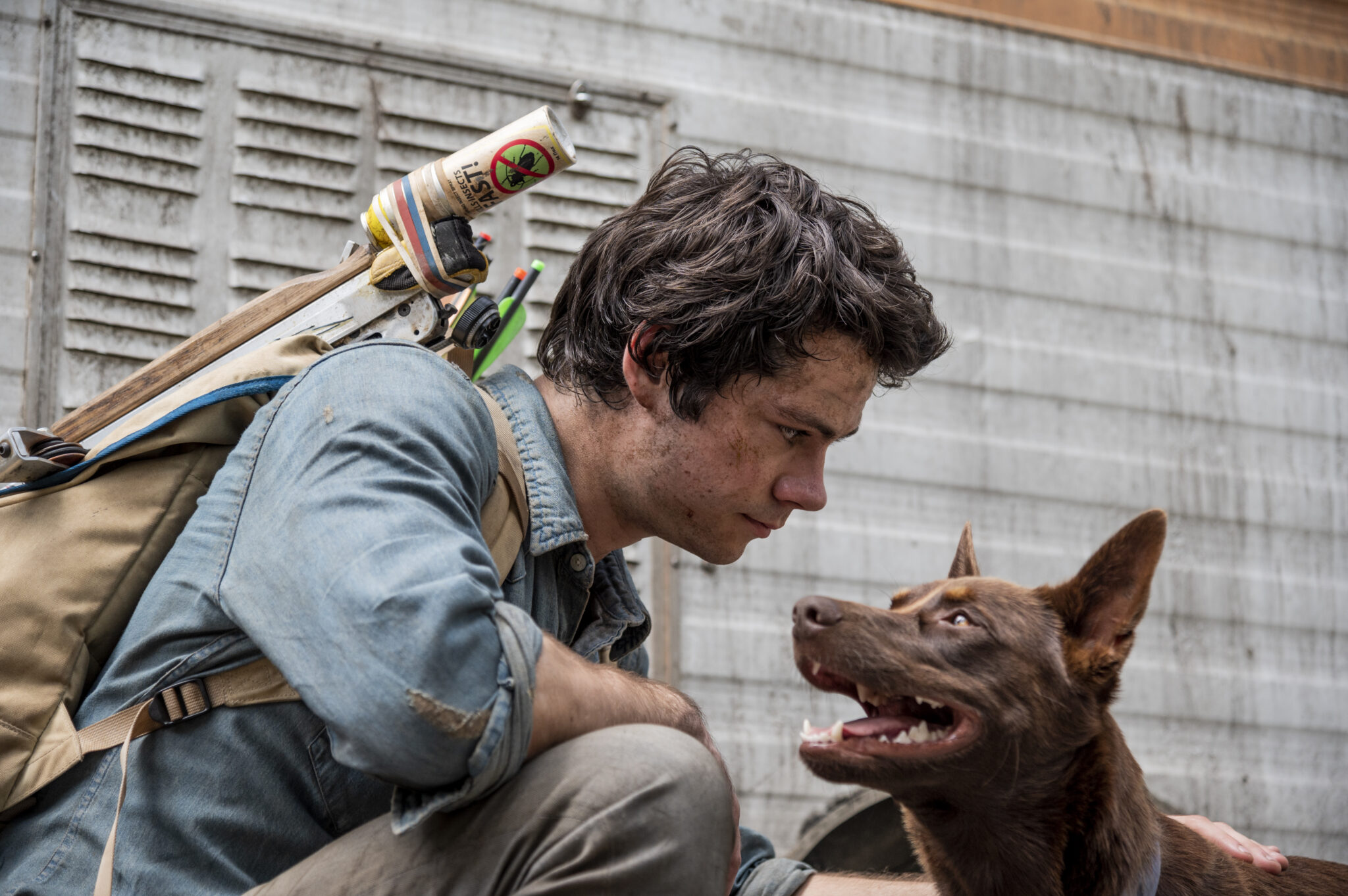 Joel (Dylan O'Brien) kniet vor seinem Hund vor einer Blechwand. Er trägt ein blaugraues Hemd und hat einen Rucksack auf dem Rücken.