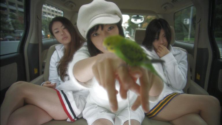 Koike sitzt mit ihren Partnerinnen in einem Auto. Auf ihrer ausgestreckten Hand sitzt ein Papagai