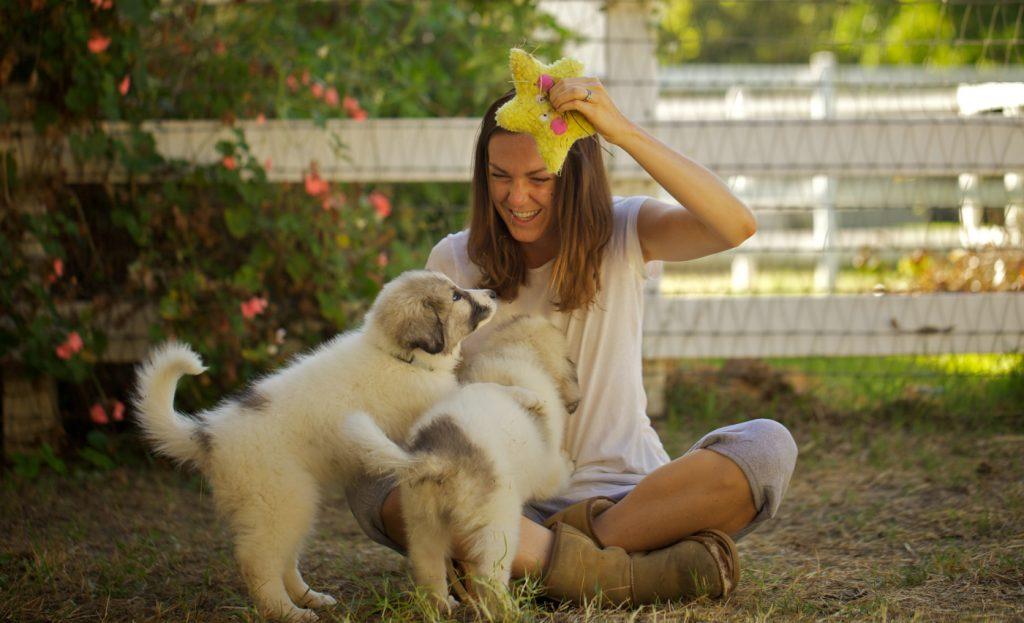 Molly mit zwei Baby-Hütehunden in Unsere große kleine Farm © 2019 PROKINO Filmverleih GmbH