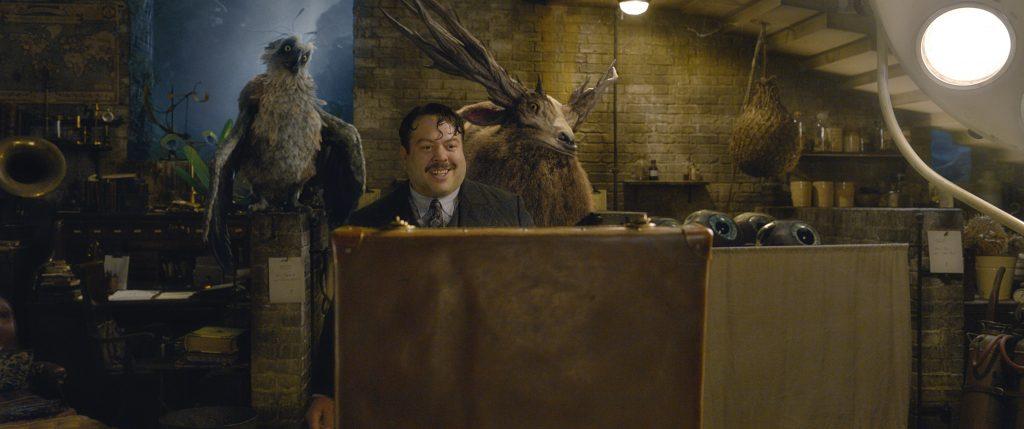Jacob Kowalski (Dan Fogler), wie immer fasziniert von seiner Umwelt in Phantastische Tierwesen: Grindelwalds Verbrechen. © Warner Bros. Entertainment Inc.