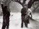 Der Wolfsmensch hält im nebligen, kargen Wald seine Geliebte Gwen, doch neben ihm erhebt sein Vater den Stock, um ihn zu töten - Universal Horror Filme